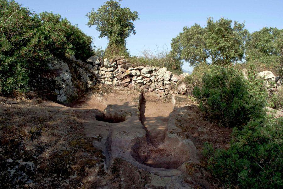 I palmenti di Ruinas