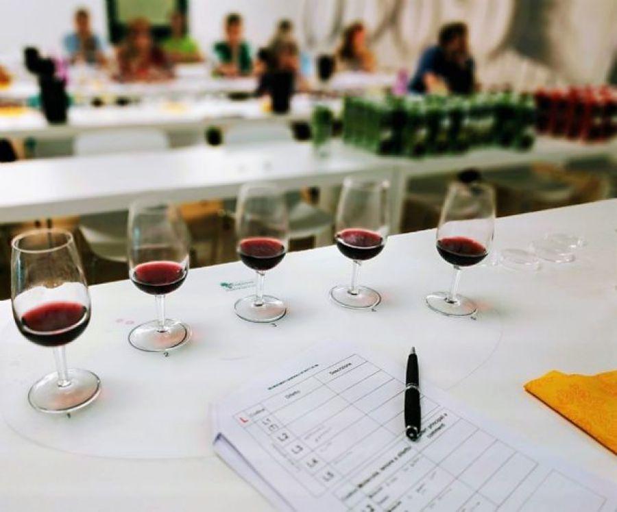 Metodologia ICV di analisi sensoriale delle uve