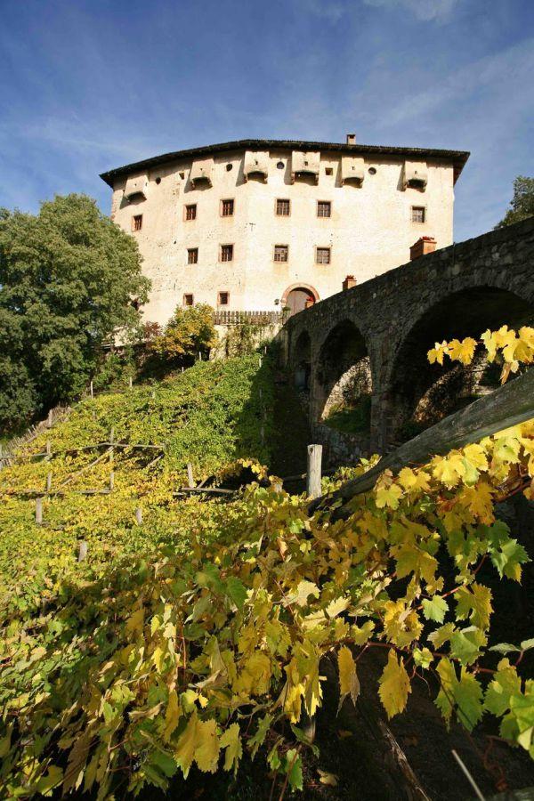 Il vino ai Giardini di Castel Trauttmansdorff