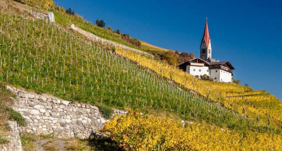 """I vini dell'Alto Adige in tour"""
