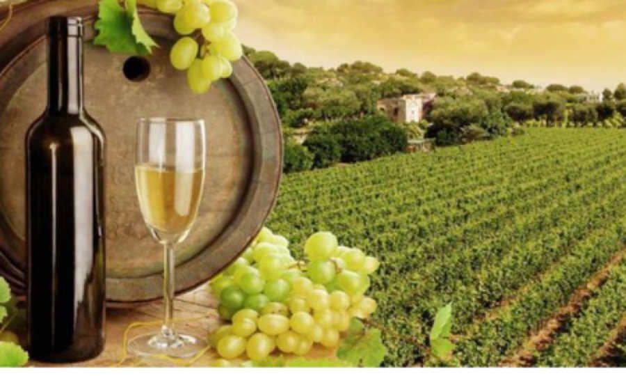 Wine tourism destination: opportunità e strategie di costruzione dell'offerta