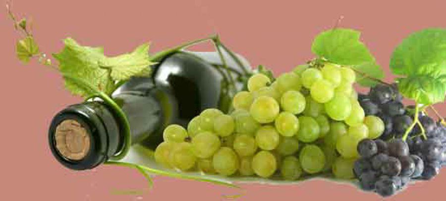 OCM vino: In Italia spesi 337 milioni per promuovere il vino
