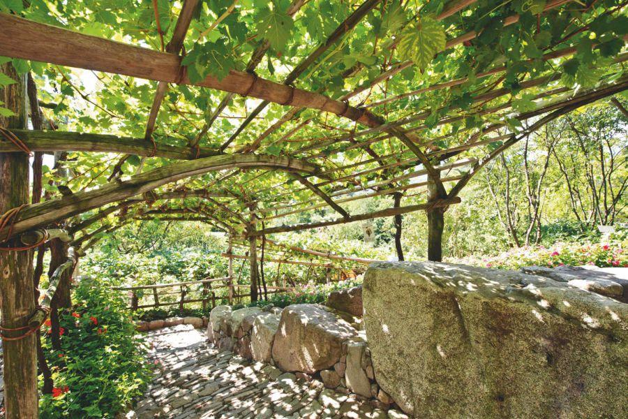 """Il rimedio """"ecologico"""" dei Giardini di Castel Trauttmansdorff"""