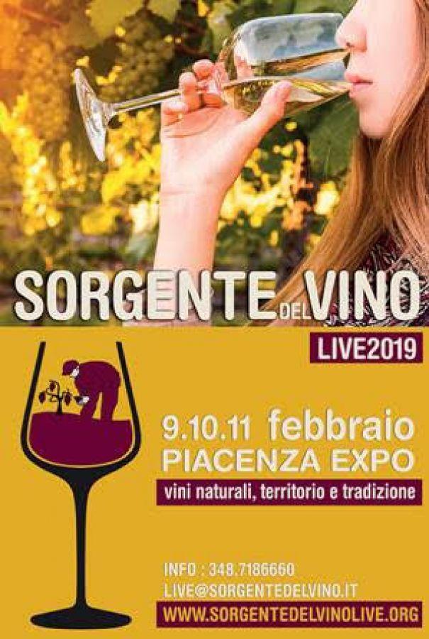 Naturalmente buoni: a Sorgentedelvino LIVE i vini che rispettano l'ambiente