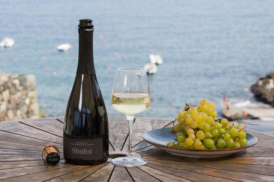 La passione per i vini e per l'isola di Pantelleria
