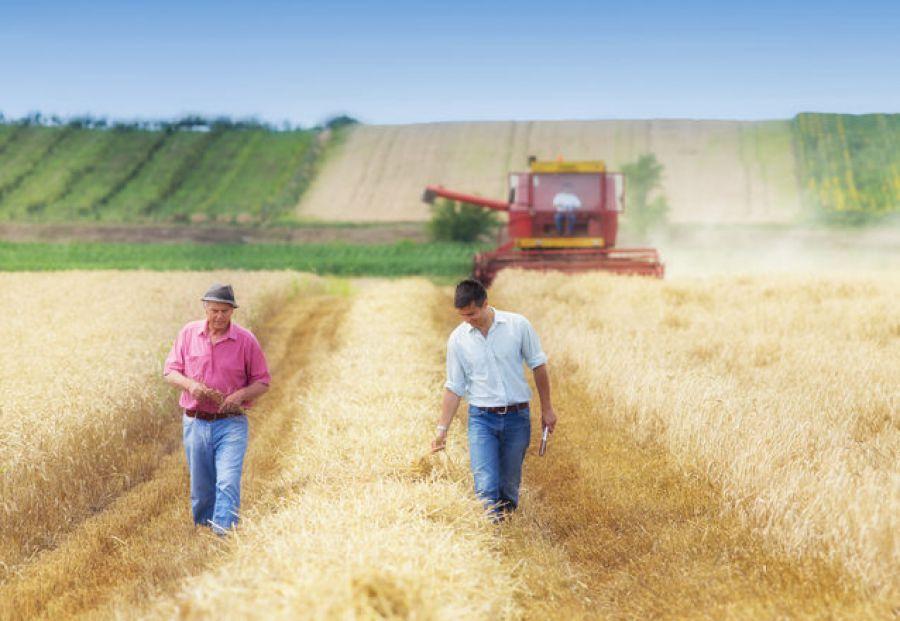 Ricambio generazionale in agricoltura