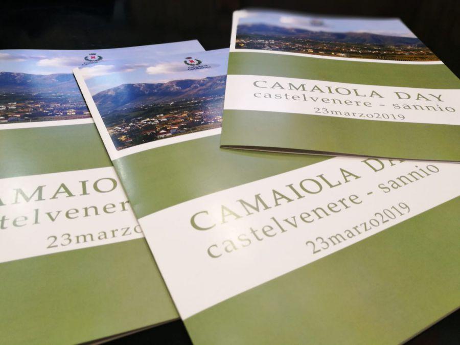 Camaiola: parte la richiesta di inserimento nel Registro delle varietà di vite