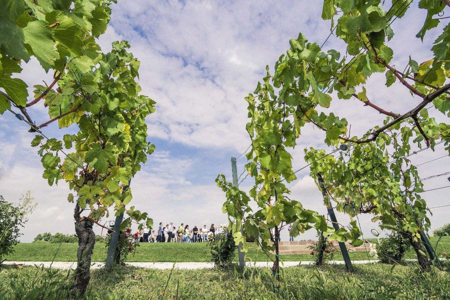 Franciacorta Summer Festival on the road
