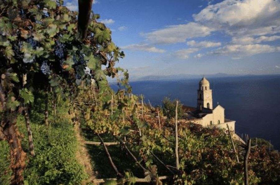 Le cantine del mare per The Grand Wine Tour