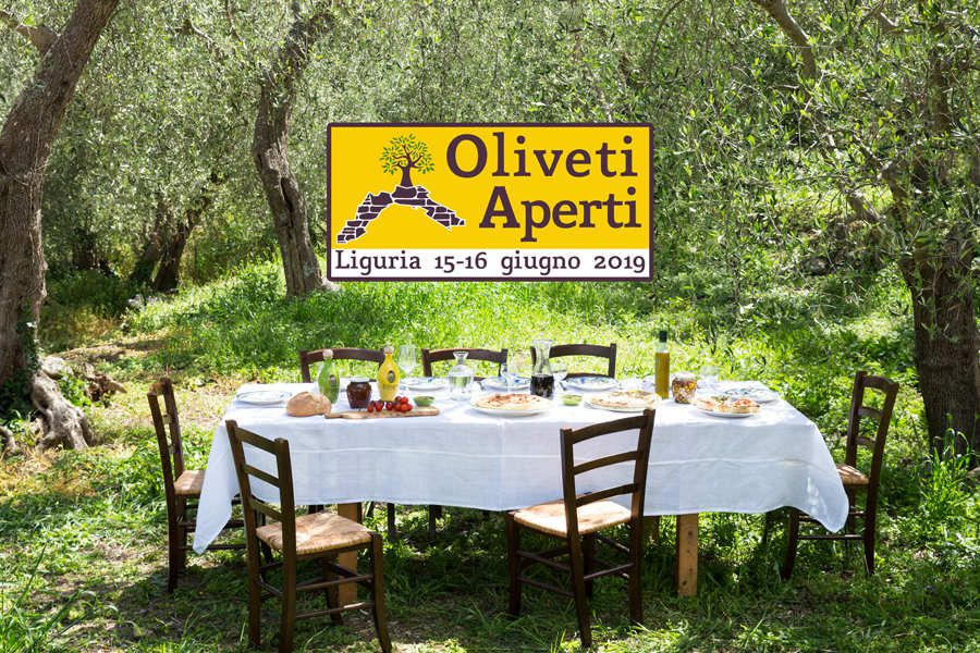 Oliveti Aperti: week-end green in Liguria