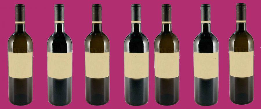 Il diritto di comunicare i territori e la cultura del vino