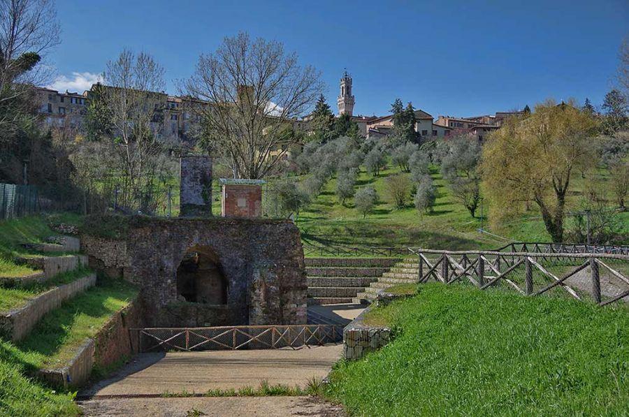 Città dell'Olio: a Siena il 25° anniversario
