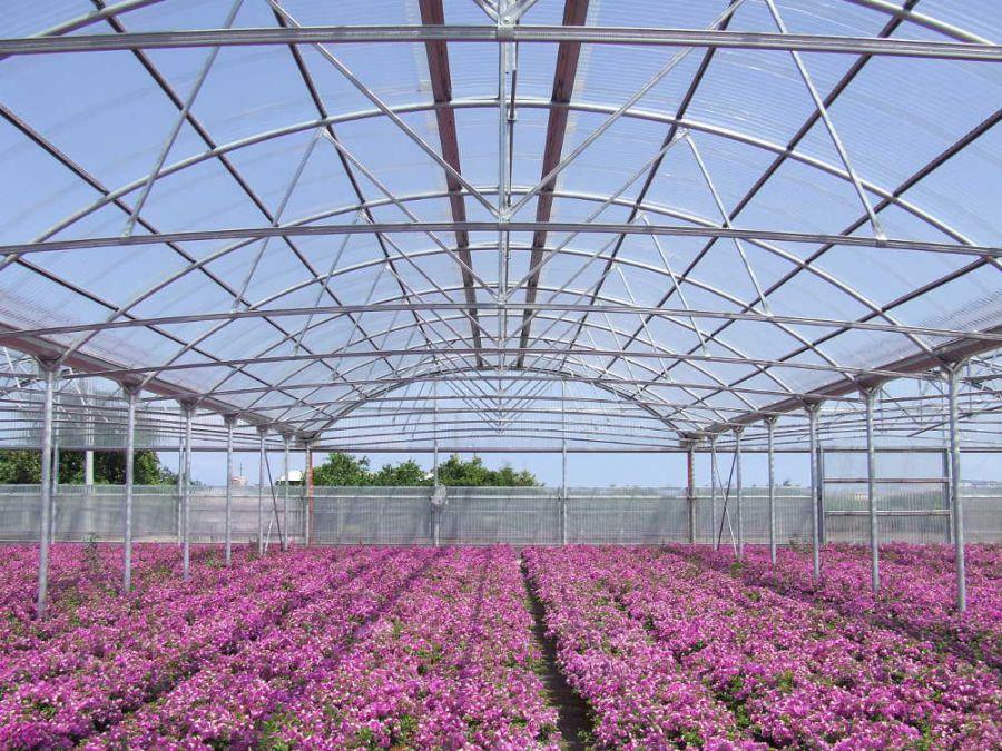 Innovazione e affidabilità in agricoltura