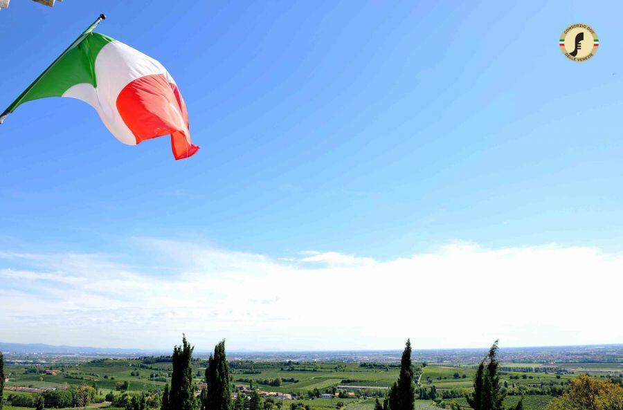 Il Pinot grigio Stile Italiano