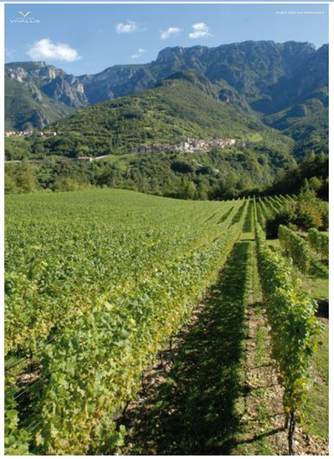 Riordino fondiario: un modello concreto di rinascita rurale