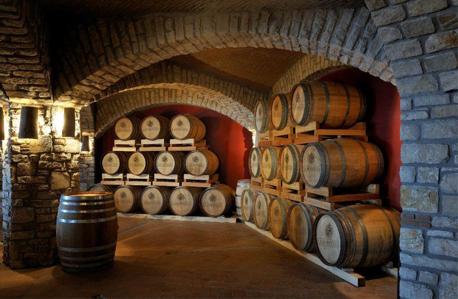 Il vino si fa in vigna
