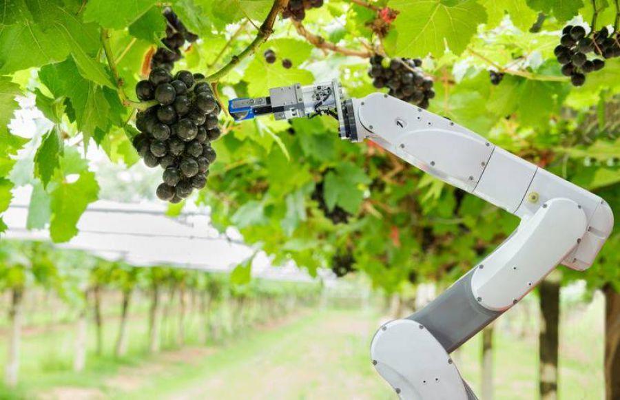 """Smart farming & food"""
