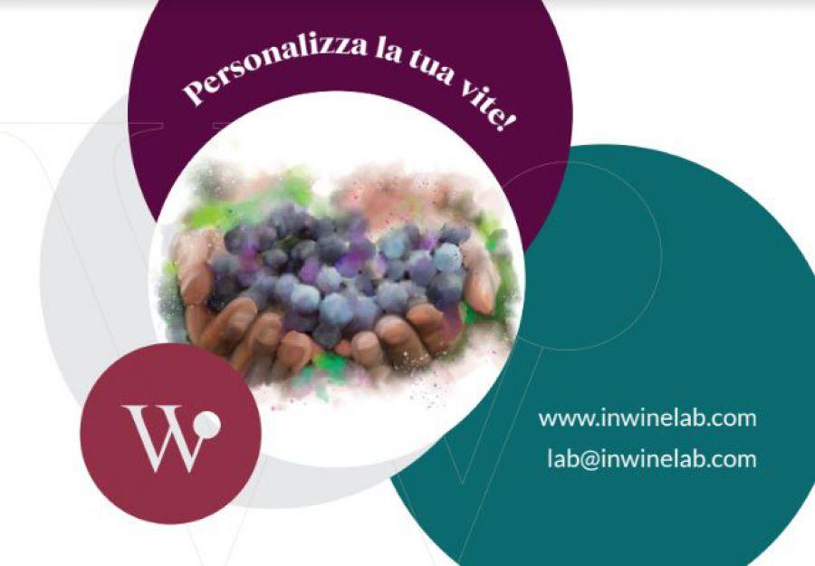Nuove varietà di vite per affrontare la viticoltura