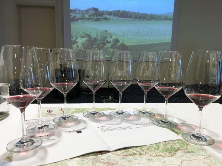 28 corsi per formare esperti del vino