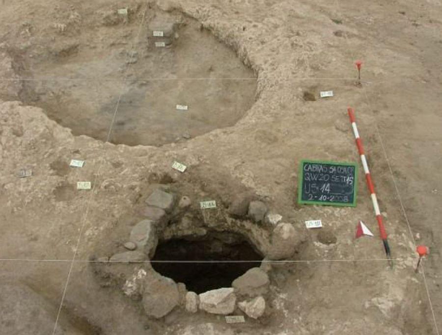 In Sardegna semi di vernaccia e malvasia di 3000 anni