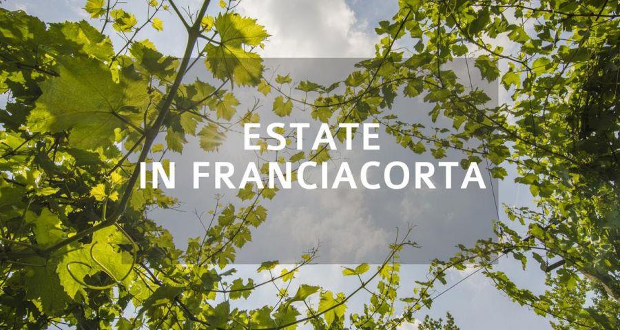 Estate in Franciacorta: le proposte di cantine, ristoratori e le attività sul territorio