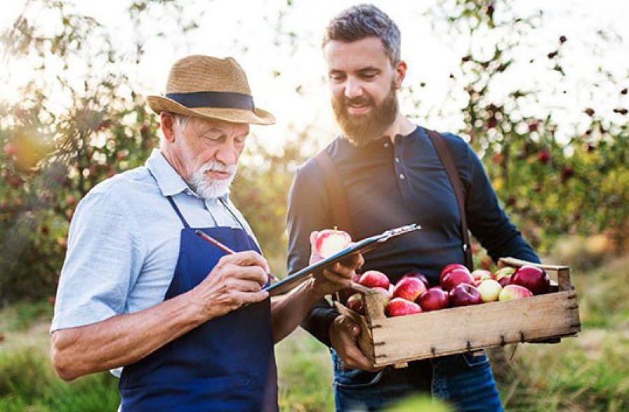 Il valore dell'agricoltura per economia italiana