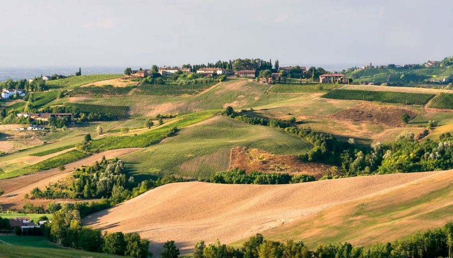 Oltrepò Pavese. Enogastronomia e Turismo