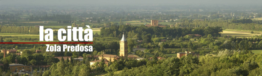 Il Turismo del vino nei Colli Bolognesi. L'esempio di Zola Predosa