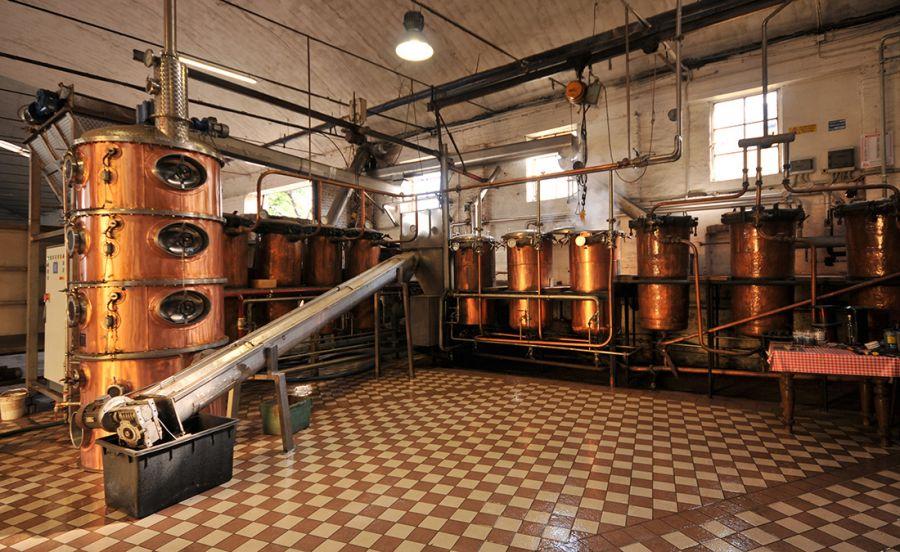 Svolta green per le distillerie
