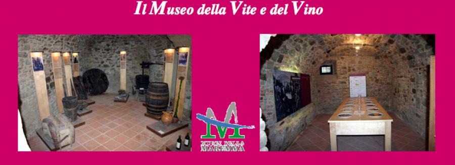 Scansano, cambia il Museo Archeologico e della Vite e del Vino
