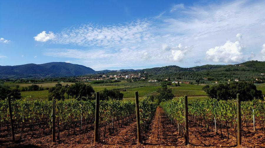 Toscana: I vini, il borgo e le persone