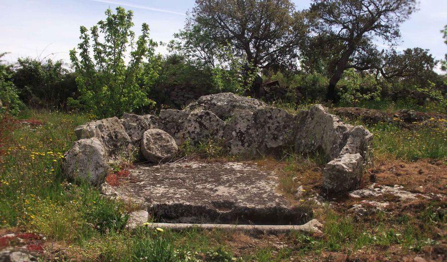Sardegna: alle origini della viticoltura
