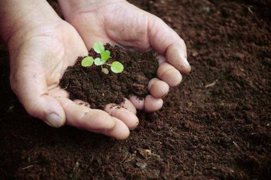 Ricerca fertile contro la fame di suolo