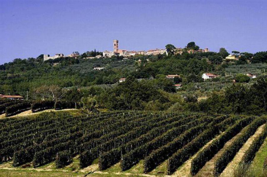 Montecarlo (Lucca), Festa del Vino