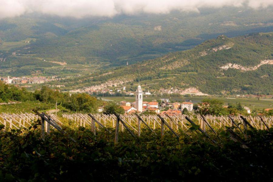 Coordinamento Città del Vino Trentino Alto Adige