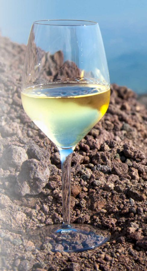 Volcanic Wines: l'Italia del Vino racconta i sei mesi di Expo