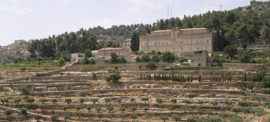 Salviamo la vigna di Cremisan: la risposta all'appello di Città del Vino