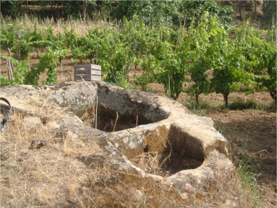 I palmenti della Locride in Calabria