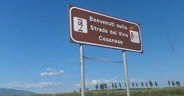 Strada del Vino Cesanese, un itinerario dove il vino fa a pace con l'acqua