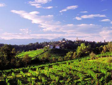 San Pietro di Feletto: al via la 46esima Mostra dei vini di collina
