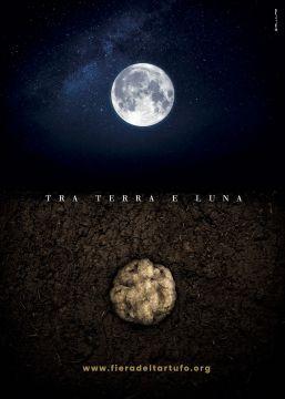 Tra terra e luna, il  Tartufo Bianco d'Alba