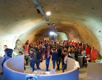 Boom di visitatori a VitignoItalia