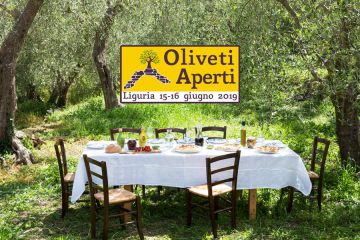 Oliveti Aperti: week-end green in Liguria