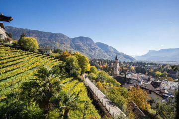 Torna Merano WineFestival