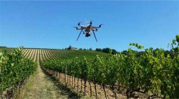 Barolo: Tim Smart Agricolture, innovazioni in vigna