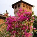 Nel giardino del Castello