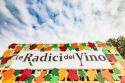 Le Radici del Vino: ricco programma per l'edizione del centenario